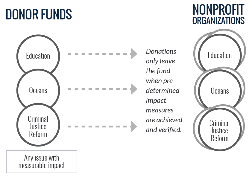 Donor funds. Nonprofit organizations. Any issue with measurable impact.