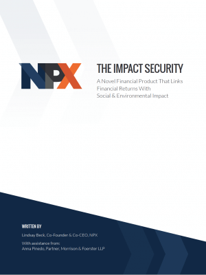 White Paper | The Impact Security: A Novel Financial Product That Links Financial Returns With Social & Environmental Impact